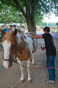 Sabir brushes his horse before riding at South 40 Farm.