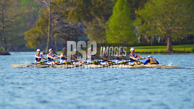 3-22-14 Rollins Rowing (C) PSP Images 2014