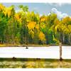 """""""Fall Paddle"""""""