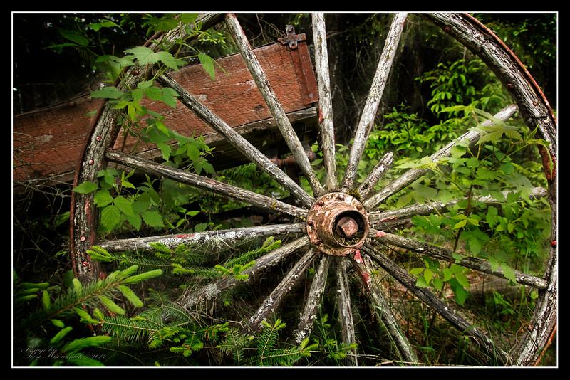 """""""Wirt's Wheel"""""""