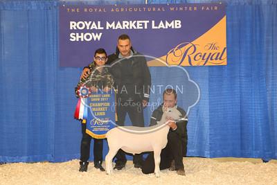 2017 RAWF Market Lamb Sale Photos