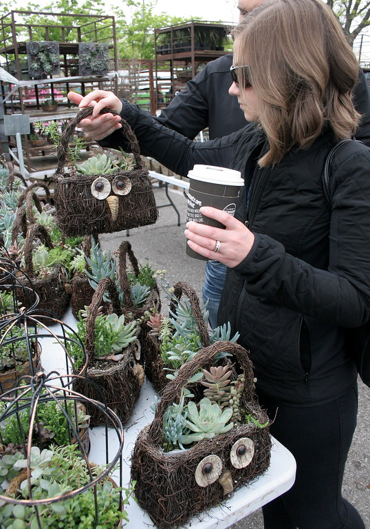 . Mike and Brittnie Berger, Royal Oak, purchase an owl purse filled with succulents for Mike\'s mom.   Visitors browse a wide selection of zinnias, geraniums, begonias, and other flowers and plants at Sunday\'s 24th Annual Royal Oak in Bloom festival in Royal Oak, Michigan on May 14, 2017.  Over 65 vendors offered hanging baskets, plants, vegetables, perennials, annuals, and garden accessories for sale to families shopping this annual Mother\'s Day event hosted by the Royal Oak Chamber of Commerce. (Photo by: Brandy Baker)