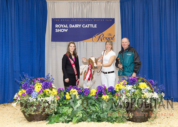 Royal2015Ayr01_SmrCalf_7275_