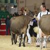 Royal15_Jersey_L32A9498