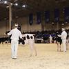 Royal16_Holstein_1M9A9587