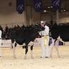 Royal16_Holstein_1M9A9682