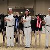Royal16_Holstein_1M9A9656