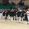 Royal16_Holstein_L32A3770