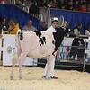 Royal16_Holstein_L32A3658