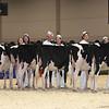 Royal16_Holstein_L32A3696