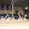 Royal16_Holstein_1M9A9572