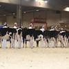 Royal16_Holstein_L32A3664