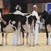 Royal16_Holstein_L32A3665
