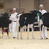 Royal16_Holstein_L32A3802