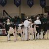 Royal16_Holstein_L32A3572