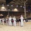 Royal16_Holstein_1M9A9551