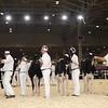 Royal16_Holstein_1M9A9605