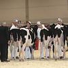 Royal16_Holstein_L32A3779