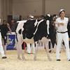 Royal16_Holstein_L32A3789