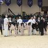 Royal16_Holstein_L32A3577