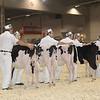 Royal16_Holstein_1M9A9525