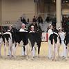 Royal16_Holstein_1M9A9649