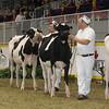 Royal16_Holstein_1M9A9856