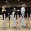 Royal16_Holstein_1M9A9646