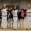 Royal16_Holstein_1M9A9658