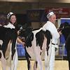 Royal16_Holstein_L32A3672