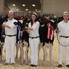 Royal16_Holstein_1M9A9655