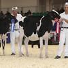Royal16_Holstein_L32A3803