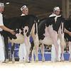 Royal16_Holstein_L32A3751