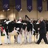 Royal16_Holstein_1M9A9652