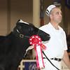 Royal16_Holstein_L32A3706