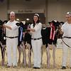 Royal16_Holstein_1M9A9657