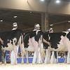 Royal16_Holstein_L32A3753