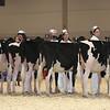 Royal16_Holstein_L32A3695