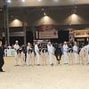 Royal16_Holstein_1M9A9522