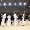 Royal16_Holstein_1M9A9606