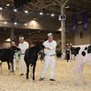 Royal16_Holstein_1M9A9563
