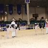 Royal16_Holstein_1M9A9575
