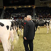 Royal16_Holstein_1M9A0409