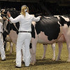 Royal16_Holstein_1M9A0800