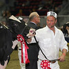 Royal16_Holstein_L32A4439