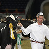Royal16_Holstein_L32A4273