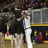Royal16_Holstein_L32A4214