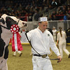 Royal16_Holstein_1M9A0425