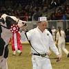 Royal16_Holstein_1M9A0425