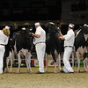 Royal16_Holstein_1M9A0680